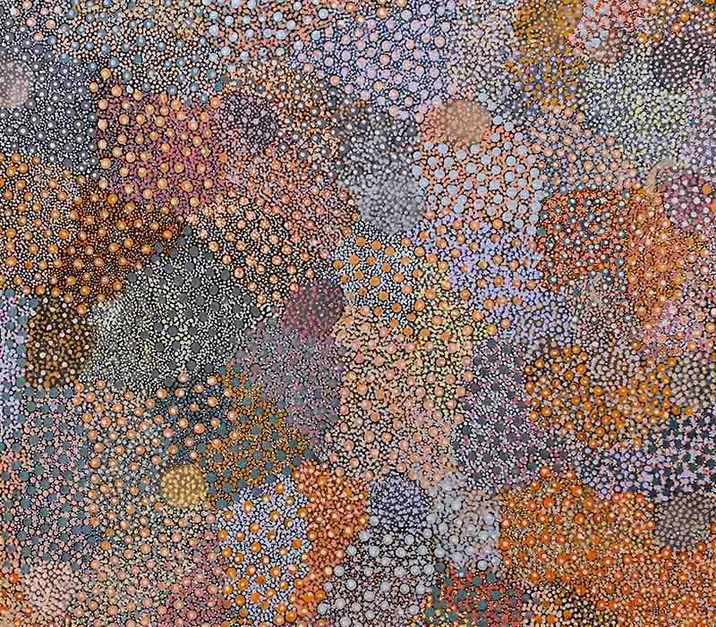Rosalie Miller Jugadai Napaltjarri, 122 x 91cm, #736-17 Image
